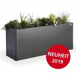 Planting Bed Belvedere
