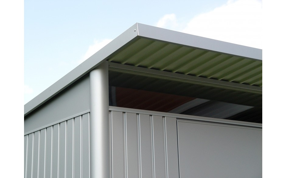 Plexiglas bovenverlichting met dakoverstek